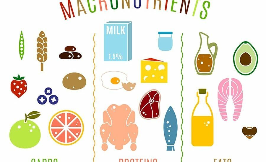 Keto Macronutrients and How They Affect the Body in the Ketogenic Diet-min