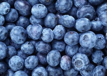 Are Blueberries Keto? Setting The Record Straight On What Is And Isn't Keto-Friendly