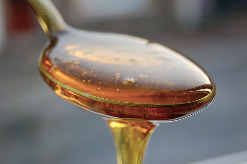 honey on low carb diet