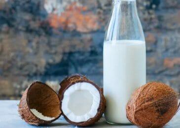 Coconut Milk Keto Recipes