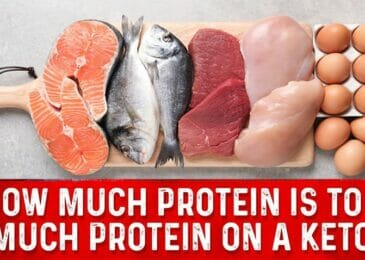 How Much Protein Will Kick Me Out of Ketosis ?